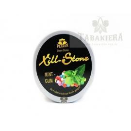 Kamienie parowe Xill iStone Planta Mint Gum 120g